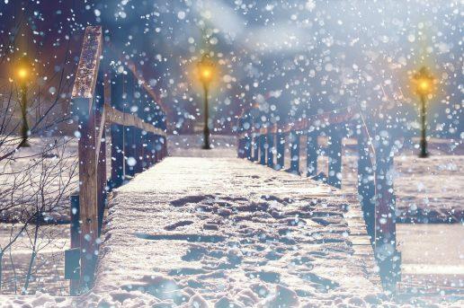 Winter picture books