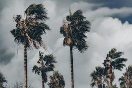 Storm resistant?