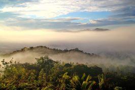 Borneo fieldtrip